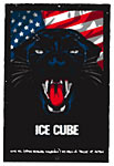 Scrojo Ice Cube Poster